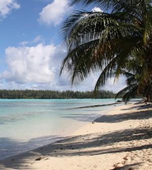 Strand auf Moorea (Französisch Polynesien) beim Chez Nelson Backpacker