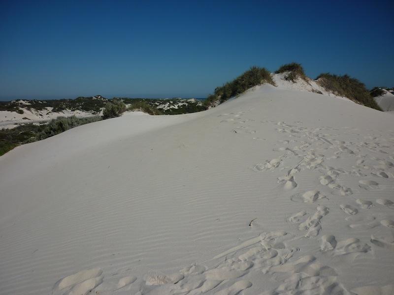 Australien-Coral-Bay-17