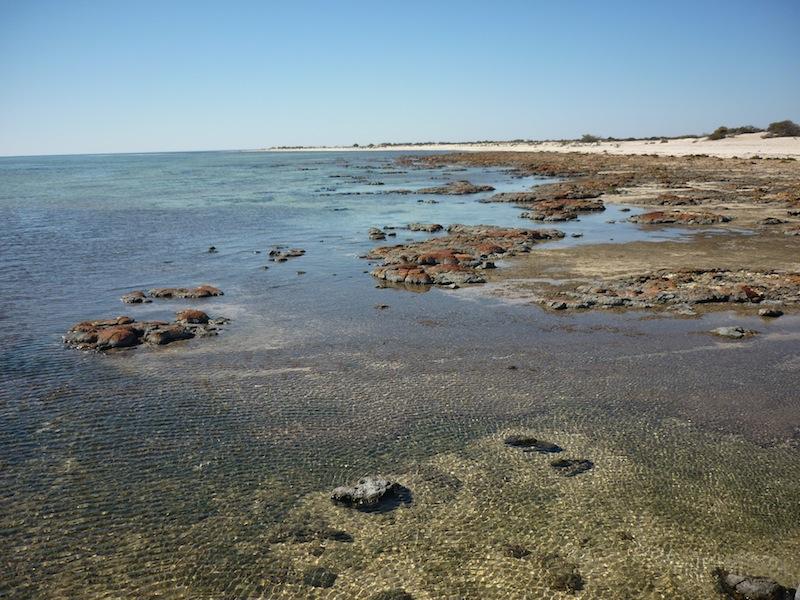 Australien-Coral-Bay-28