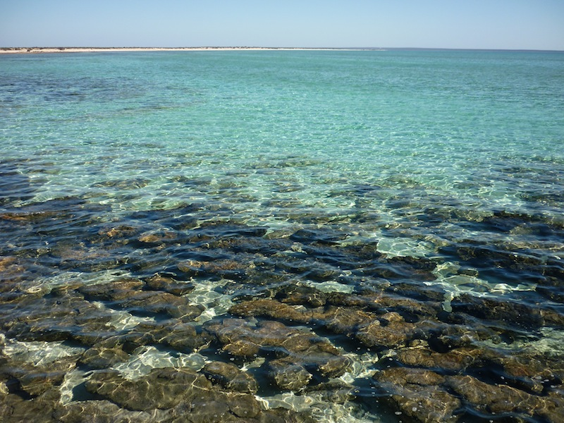 Australien-Coral-Bay-29