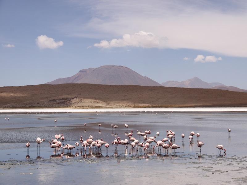 Peru-Salar-de-Uyuni-17