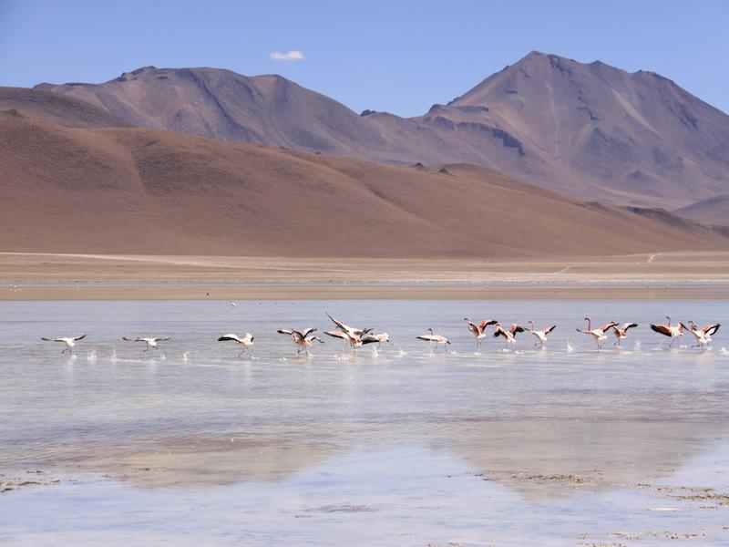 Peru-Salar-de-Uyuni-39
